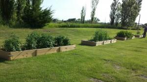 Garden 0614