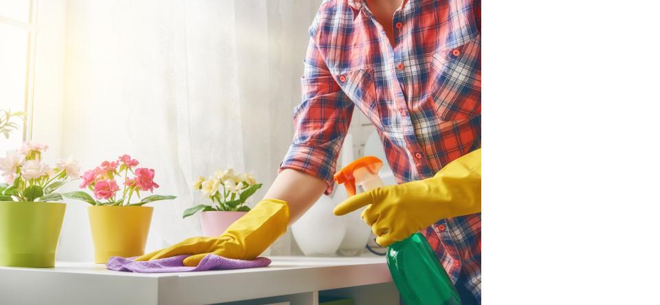 Homemaker Services